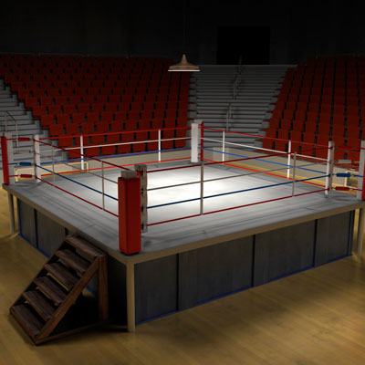 https://www.crn.com/ckfinder/userfiles/images/crn/images/boxing_ring400.jpg