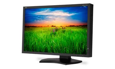 NEC MultiSync Monitor